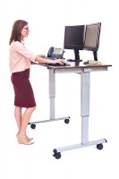 "48"" Electric Standing Desk with Silver Frame and Dark Walnut Desktop"